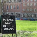 Englicher Rasen