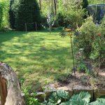 Gartenblick (Mai)