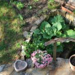 Terrassenbeet (Mai)